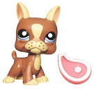 Littlest Pet Shop Singles Boston Terrier (#1789) Pet