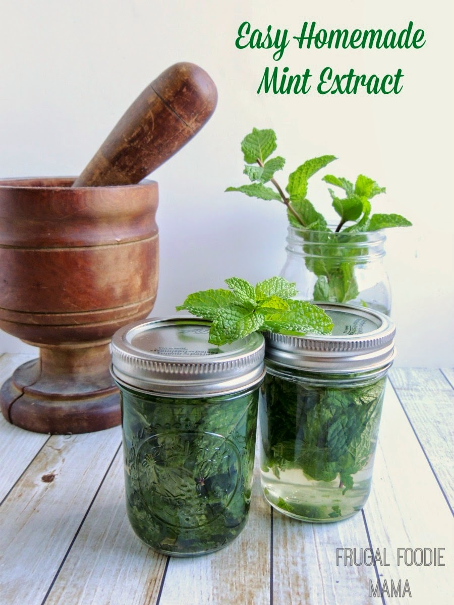 Easy Homemade Mint Extract via thefrugalfoodiemama.com - the perfect way to preserve that fresh garden mint!
