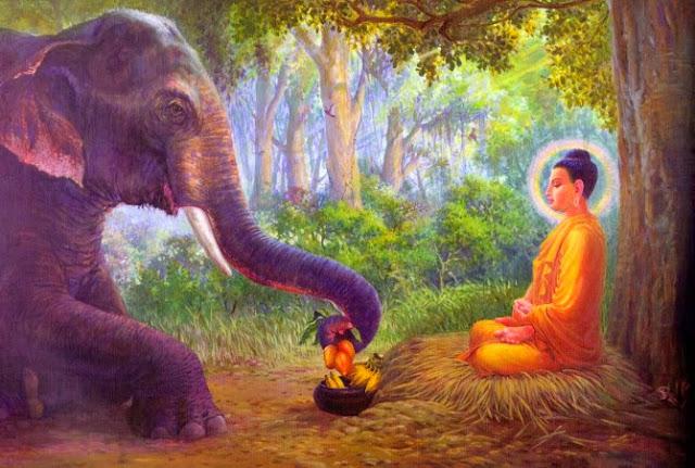 Đạo Phật Nguyên Thủy - Kinh Tương Ưng Bộ - Sariputta nhập Niết bàn