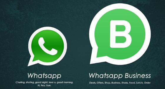 Wajib Tahu! Kelebihan WhatsApp Bisnis dibanding Whatsapp Non Bisnis