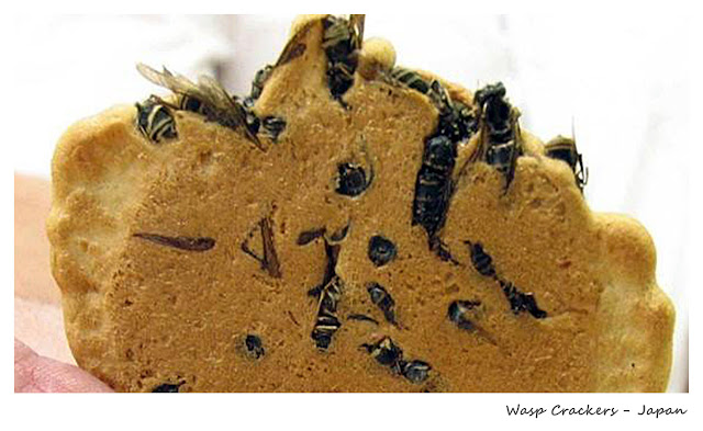 Top 10 Weirdest Food in Asia - Wasp Crackers - Japan | Ramble and Wander