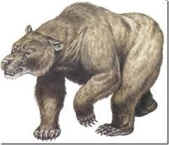 oso cavernario