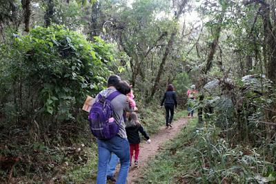 Trilha curta do Horto Florestal com crianças