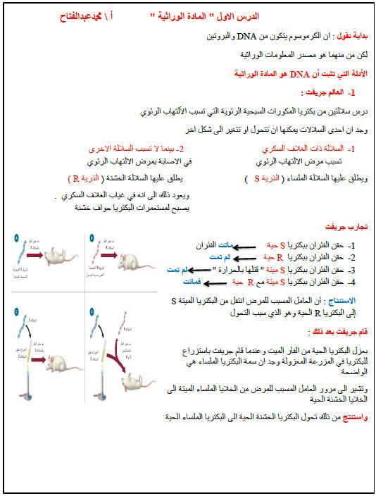 ملخص الوراثة الجزيئية أحياء فصل أول صف ثاني عشر متقدم 1442
