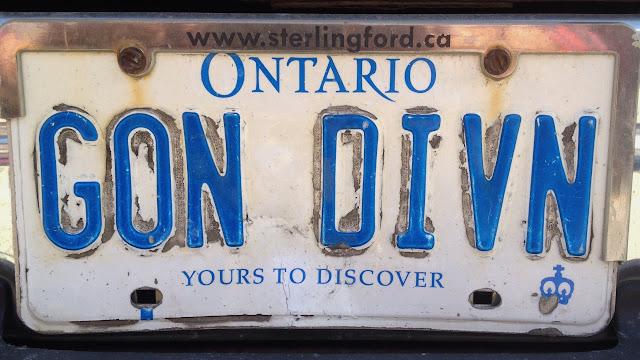 Ontario personalized vanity plate GON DIVN