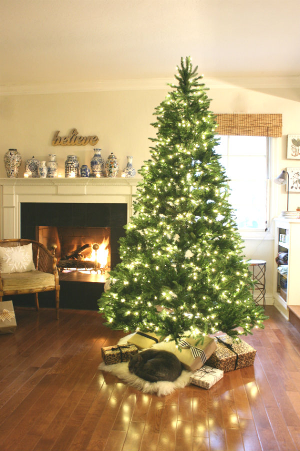 our new christmas tree - Beach Christmas Tree