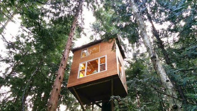 treehouse home
