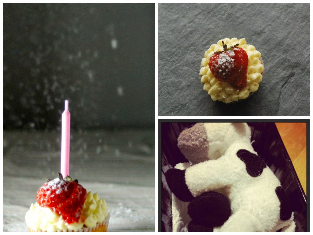 cupcakes and a cow #bcuk