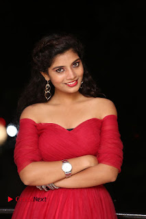Actress Bindu Pictures in Red Dress at Attarillu Movie Press Meet 0012.JPG