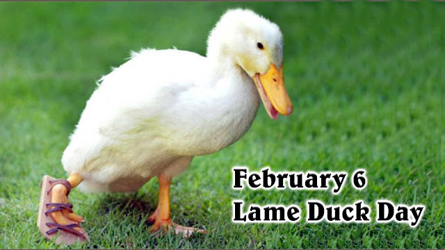 Image result for Lame Duck Day