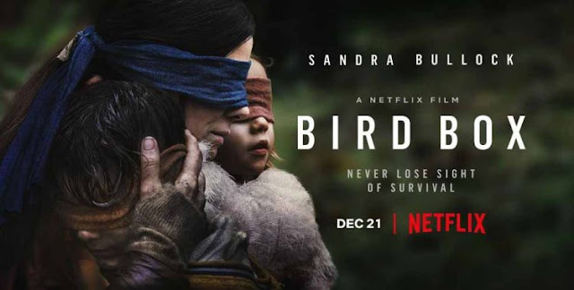 poster de divulgação produzido pela netflix para the bird box