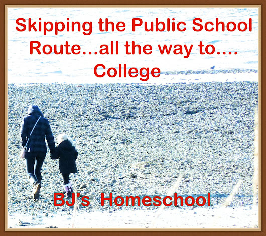 Skipping the Public School Route.....all the way to College