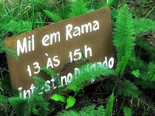 Das 13h às 15h - Mil em Rama. Relógio Medicinal do Horto Medicinal, Candelária (RS)