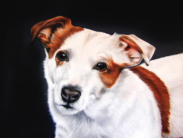 """Eddie"" dog portrait by Pia Ledy"