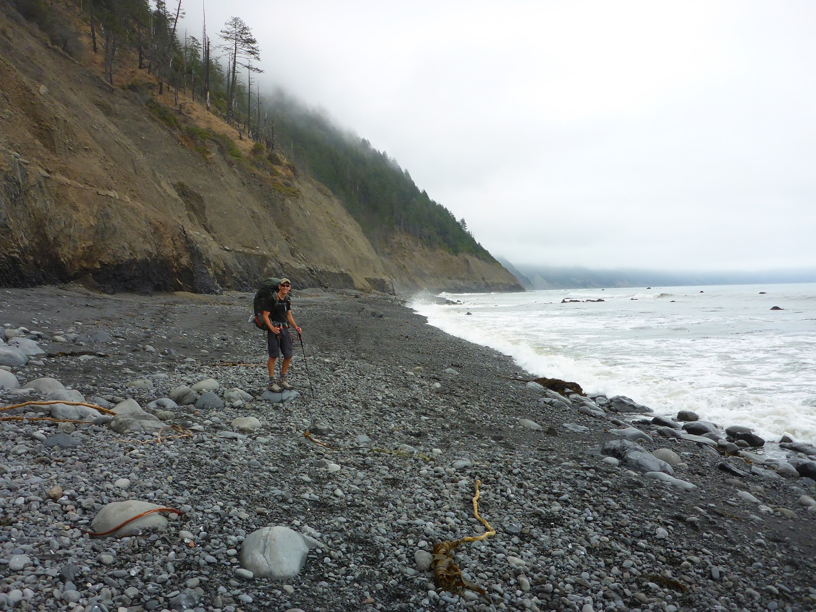 From seed to table garden update august 31 2016 we spent 3 days and 2 nights on the trail and the nights before and after the hike in shelter cove it was foggy the entire time but we didnt mind because nvjuhfo Gallery