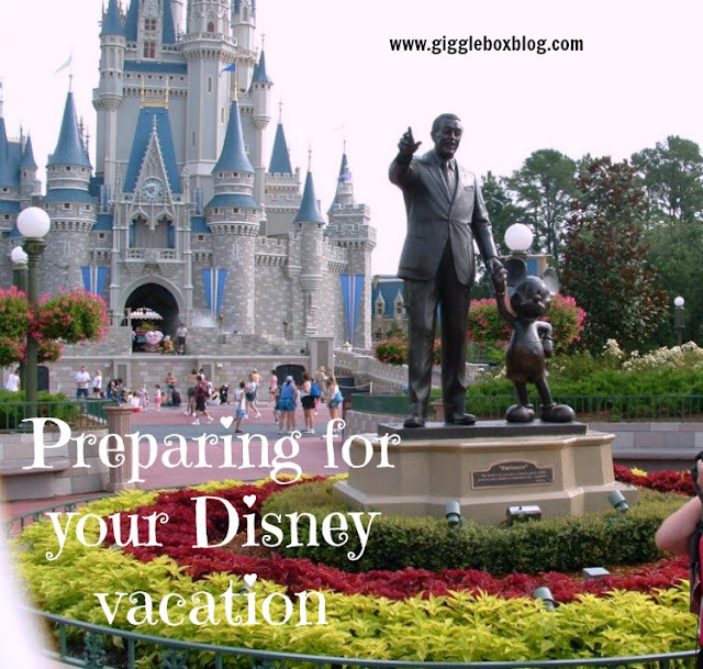 tips and suggestions on what to pack and purchase before and during a Disney vacation, Disney vacation tips, Walt Disney World vacation tips and suggestions, Disneyland vacation tips and suggestions, Walt Disney World, Disneyland, Disney vacation,