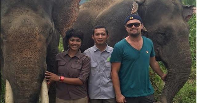 DiCaprio quiere construir un santuario para salvar animales