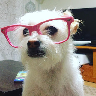 Molly wearing glasses