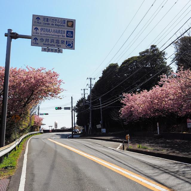 国道135号 今井浜