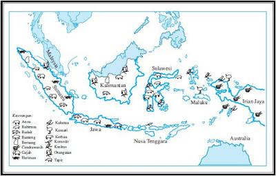Persebaran Jenis-Jenis Flora dan Fauna di Indonesia Bagian Barat, Timur dan Bagian Tengah Beserta Gambarnya