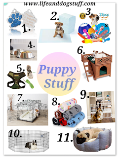 Puppy products to buy