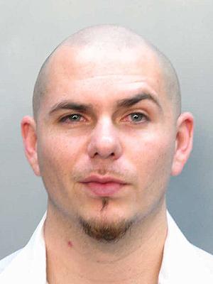 Hollywood Stars Pitbull Rapper