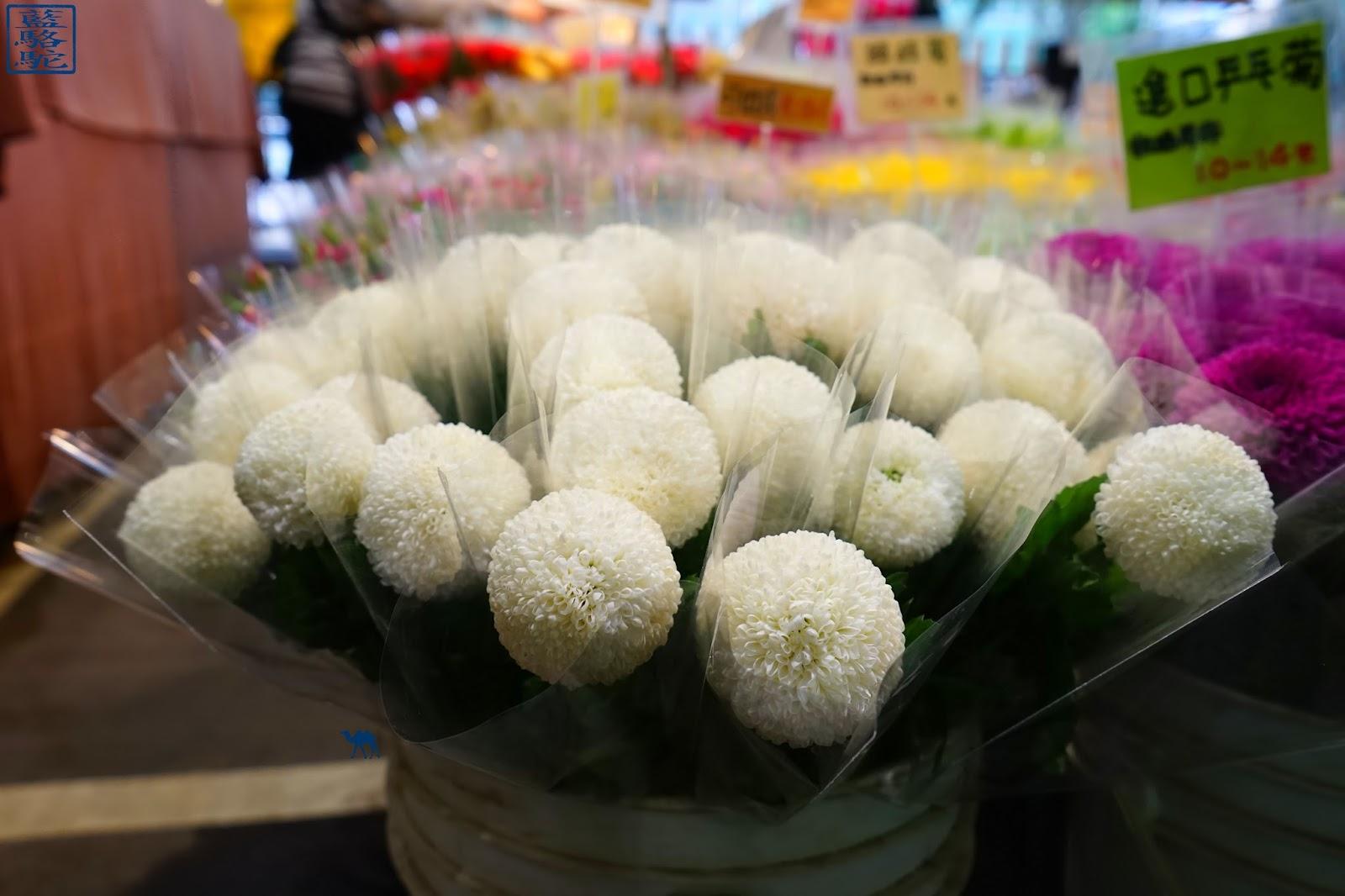 Le Chameau Bleu - Taipei - Taiwan - Marché aux fleurs - vacances taiwan