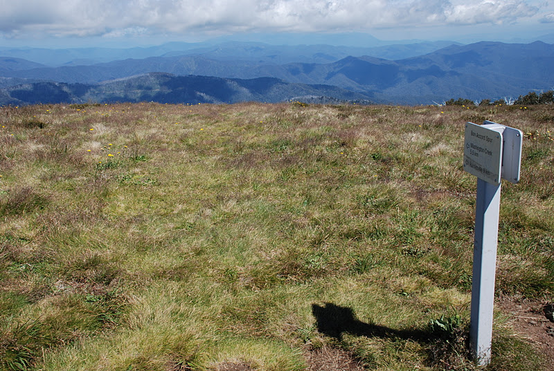 walkabouters club of victoria inc  mount feathertop part 1