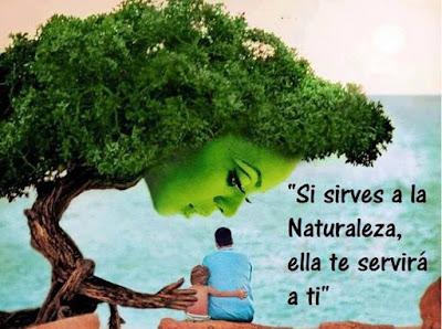 si sirves a la naturaleza ella te servirá a ti