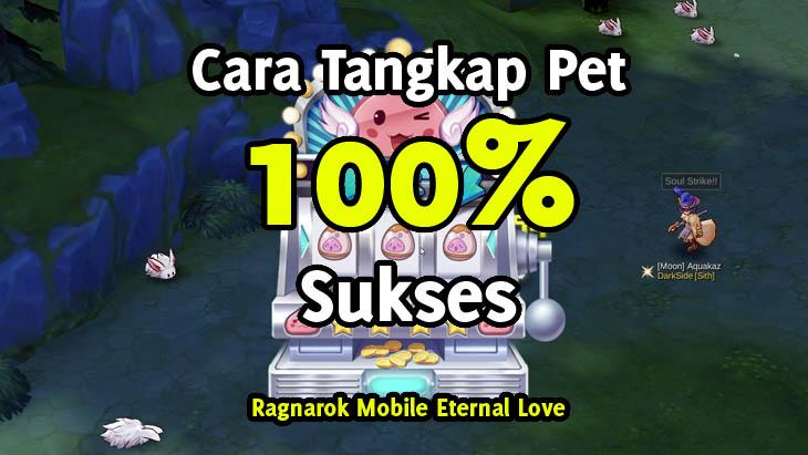 Panduan Menangkap Pet 100% Sukses Ragnarok M Eternal Love