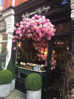 vitrines floridas