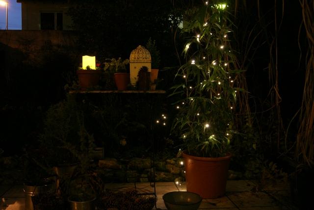 Gartentisch weihnachtlich dekoriert mit Kerze und LED-Lichterkette