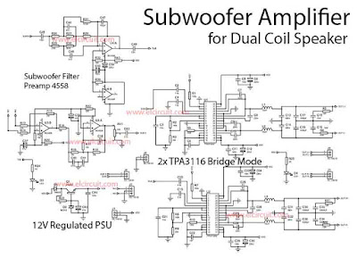 Circuit Subwoofer Power Amplifier Class-D Dual Bridge TPA3116D2