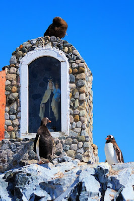 Penguins visit Mother Mary shrine picture