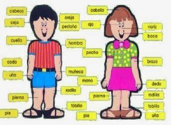 http://www.chiscos.net/almacen/lim/las_partes_de_mi_cuerpo/lim.swf?libro=las_partes_de_mi_cuerpo.lim
