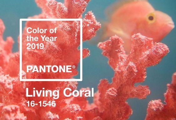 Cor 2019: Living Coral!