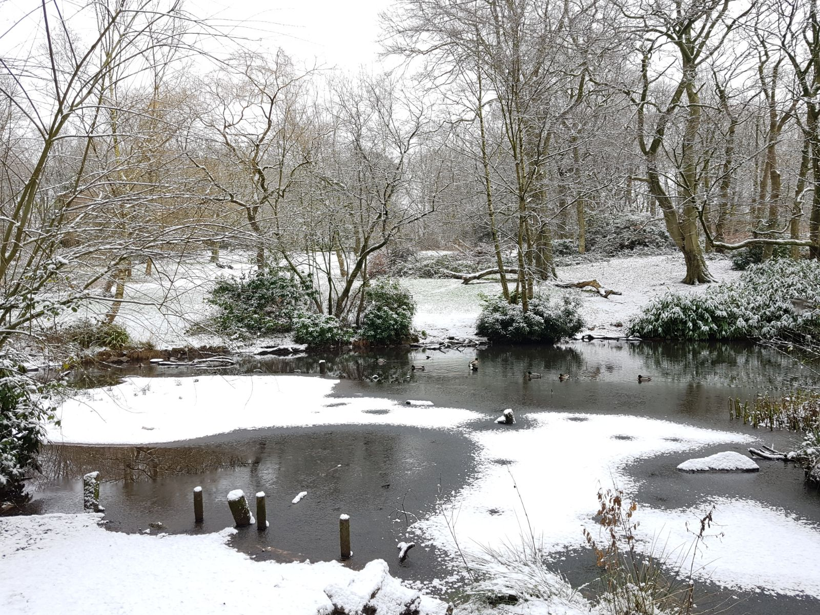 Heaton Park in the snow, December 2017