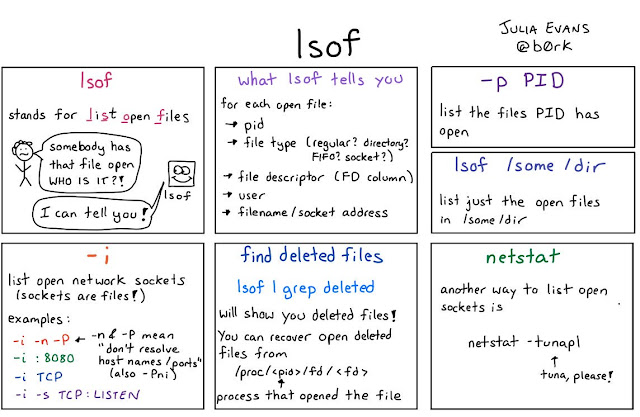 10 Example of lsof commands in UNIX and Linux