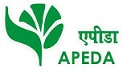 APEDA Job Vacancy