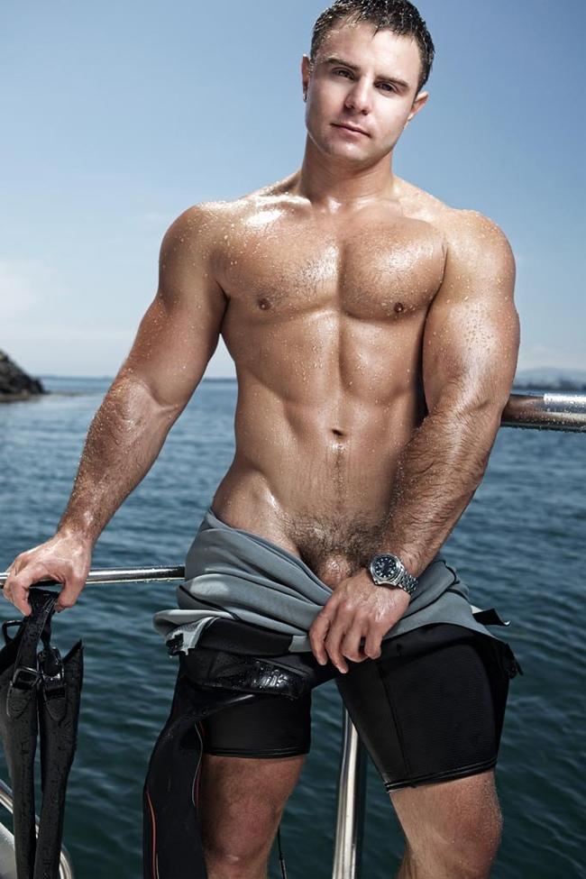 Vincent vanguard model gay