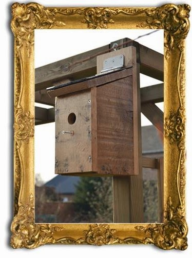 nestkastje bouwen | nestkastje maken | vogelhuisje bouwen | vogelhuisje maken