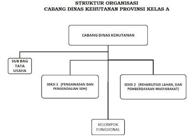 Struktur Organisasi Cabang Dinas Kehutanan Provinsi Kelas A