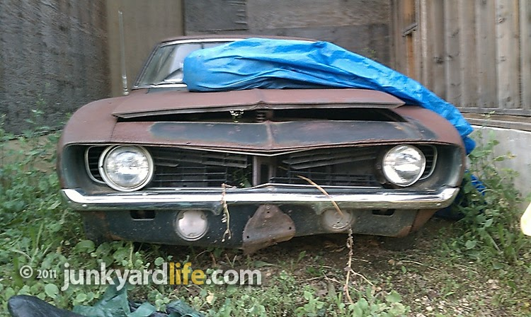 junkyard life classic cars muscle cars barn finds hot rods and part news barn find 1969. Black Bedroom Furniture Sets. Home Design Ideas