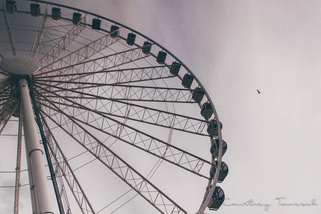 Courtney Tomesch Seattle Washington Seattle Great Wheel