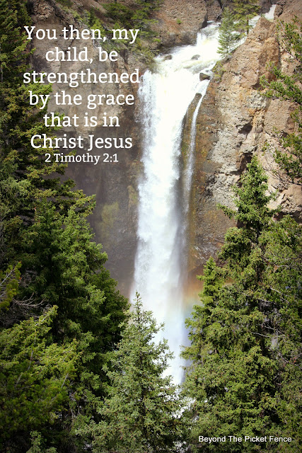devotional on what God's grace is and isn't