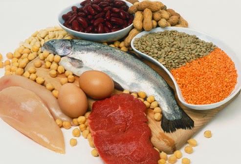 Bổ sung thức ăn giàu protein