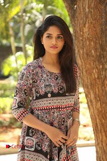 Actress Sunaina Latest Stills in Floral Dress at Pelliki Mundu Prema Katha Trailer Launch  0007.JPG