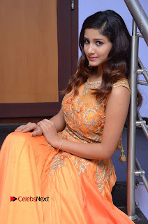 Telugu Actress Aarti Stills in Long Dress at Plus One ( 1) Audio Launch  0045.jpg