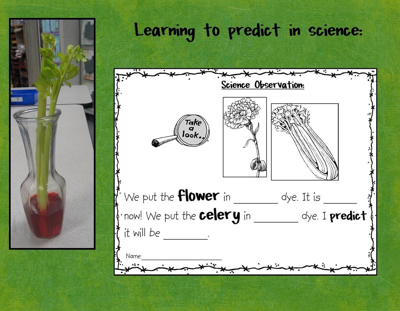 Kindergarten Crayons What S Blooming In My Room