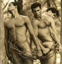 70 Models of photographer David Vance are the best from 1996 to 2016